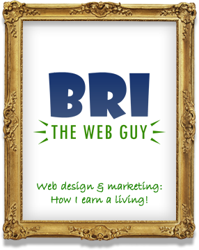 Bri the Web Guy